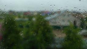 Krople lato padają na szkle podczas prysznic zbiory wideo
