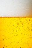 Krople lód - zimny pół kwarty piwo Zdjęcia Stock