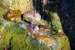 Krople spada na kamieniu i dzielić w płytką normę woda Obrazy Stock