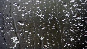 Krople spada Na okno na deszczowym dniu deszcz zdjęcie wideo