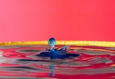 Krople woda tworzą cudownych momenty fotografia royalty free