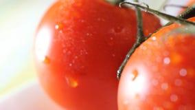 Krople wodny obcieknięcie od above dojrzałych pomidorów Ekstremum zamknięty up HD zdjęcie wideo