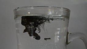 Kropli farba opuszcza w szkło woda Farba miesza pięknie z wodą Żywo maluje jasną wodę zbiory wideo