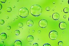 kropli tła green Zdjęcie Stock