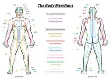 Kropp för diagram för meridiansystembeskrivning manlig royaltyfri illustrationer