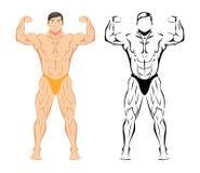 kroppsbyggare royaltyfri illustrationer