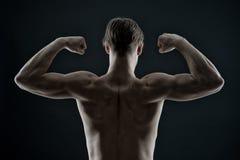 Kroppsbyggare med passformtorson, baksidasikt Muskler för arm för manidrottsman nensladd Idrottsmanshowbiceps och triceps Genomkö Arkivbild