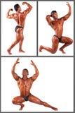 Kroppsbyggare som böjer hans muskler i studiouppsättning arkivbilder