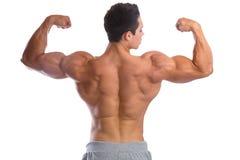 Kroppsbyggarebodybuilding tränga sig in tillbaka starkt muskulöst för biceps dig royaltyfria foton
