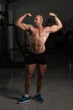 Kroppsbyggarekonditionmodell Posing Double Biceps efter övningar fotografering för bildbyråer