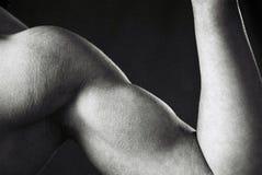 kroppsbyggarekvinnlig Arkivbilder