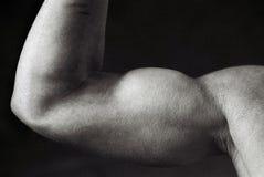 kroppsbyggarekvinnlig Royaltyfri Bild