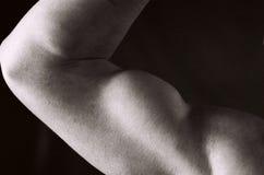 kroppsbyggarekvinnlig Arkivfoton