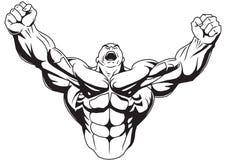 Kroppsbyggaren lyfter muskulösa armar Royaltyfri Fotografi