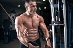 Kroppsbyggaren utarbetar driftig övre övning i idrottshall Arkivbild