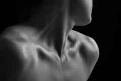 Kroppscape av den konstnärliga omvandlingen för kvinnahals- och handsinnesrörelse Royaltyfria Bilder
