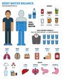 Kroppvatten Infographics med mänskliga organ, drinkar och Calculatio Arkivbilder