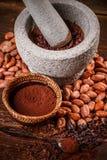 Krossade kakaobönor Arkivbilder
