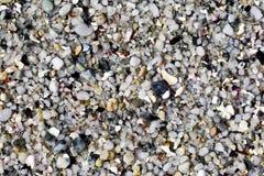 Krossade strandstenar och skal Royaltyfri Bild