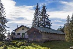Krottenalm im Brauneck-Bereich Lizenzfreie Stockfotos
