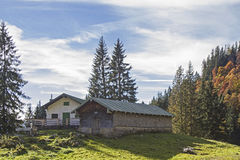 Krottenalm im Brauneck-Bereich Lizenzfreie Stockfotografie