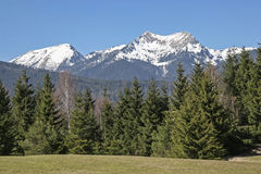 Krottenkopf w Estrowych górach Obraz Royalty Free