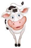 Krowa royalty ilustracja