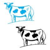 krowa ilustracji