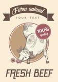 Krowa je trawy Zdjęcie Royalty Free