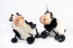 krowa jest piejący Obraz Royalty Free