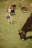 Krowa, kobieta w wieś paśniku, ekologia zdjęcia royalty free