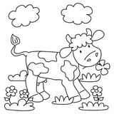Krowa - kolorystyka Zdjęcie Stock