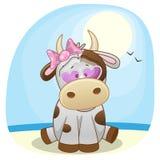 Krowa na plaży Zdjęcia Royalty Free