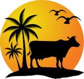 Krowa naturalny logo ilustracja wektor