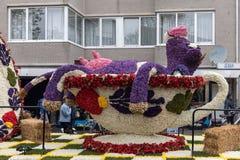 Krowa robić hiacynty przy tradycyjnymi kwiatami paraduje Bloemencorso Zdjęcia Stock