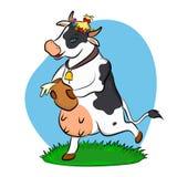 Krowa z dzbankiem mleko Fotografia Royalty Free