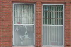 Krowa z Santa Kapeluszowym Przyglądający się out okno Fotografia Stock