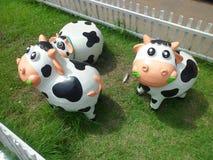 krowy Fotografia Stock