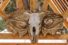 Krowy czaszka Obraz Royalty Free