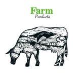 Krowy sylwetki nakreślenia plakat Zdjęcie Stock
