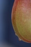 Krug-Detail Stockfotografie