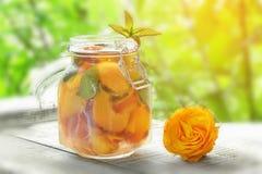Krug mit Abdeckung mit Wasser, Detox mit Stücken des Pfirsiches und Aprikose, mit Eis Ein Auffrischungsgetränk auf einem grünen H Stockfotos