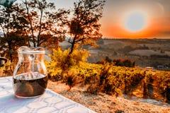 Krug Wein auf Tabelle in der Landschaft Stockbilder