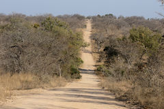 Kruger National Park Stock Images