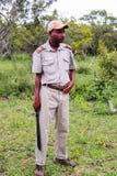 Kruger nationalpark, Sydafrika - 2011: Safarihandbok som rymmer en machete royaltyfri foto