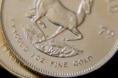 Krugerrand surafricano 1oz multa el oro Imagen de archivo libre de regalías