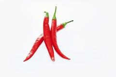 Kruid drie rode paprikaspaanse peper Royalty-vrije Stock Fotografie