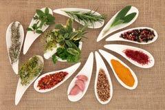 Kruid en Herb Seasoning royalty-vrije stock foto