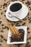 Kruid en koffie Stock Foto's