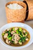 Kruid Kip met kerrie Thaise Keuken Royalty-vrije Stock Afbeeldingen